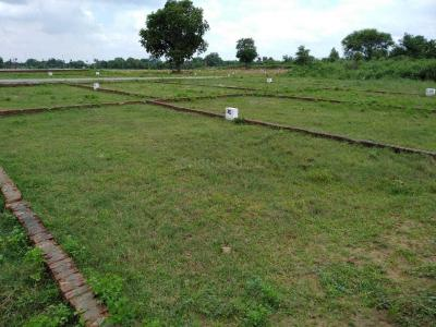 1000 Sq.ft Residential Plot for Sale in Mithapur, Patna