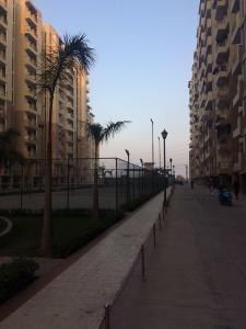 Gallery Cover Image of 1350 Sq.ft 3 BHK Apartment for rent in OXY Homez, Bhopura for 8500