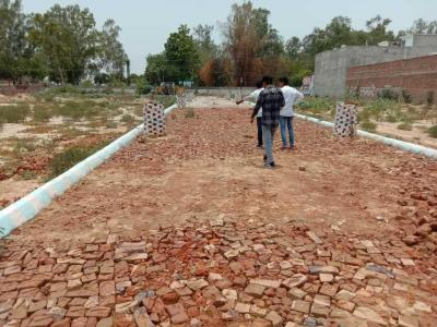 Gallery Cover Image of  Sq.ft Residential Plot for buy in Dhoomanganj for 1350000
