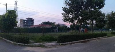 269 Sq.ft Residential Plot for Sale in Sector 99, Gurgaon