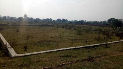 Gallery Cover Image of  Sq.ft Residential Plot for buy in Madiyava for 499000