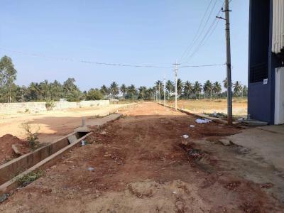 1200 Sq.ft Residential Plot for Sale in Sampigehalli, Bangalore