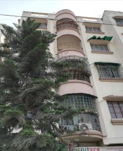 Gallery Cover Image of 850 Sq.ft 2 BHK Apartment for rent in Narendrapur for 10000