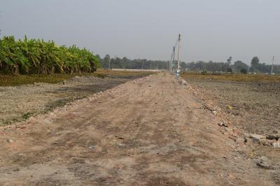 1800 Sq.ft Residential Plot for Sale in Rania, Kolkata