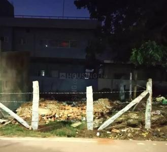 800 Sq.ft Residential Plot for Sale in Bheemasandra, Tumkur