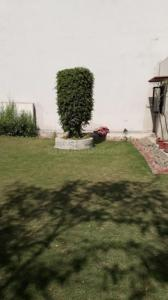 Gallery Cover Image of 500 Sq.ft Residential Plot for buy in Sector 44 for 50000000