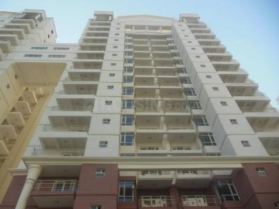 Gallery Cover Image of 2137 Sq.ft 3 BHK Apartment for rent in Sector 82 for 23000