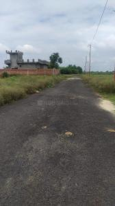 250 Sq.ft Residential Plot for Sale in Noida Extension, Greater Noida