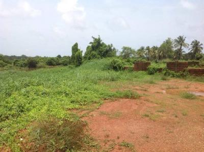 Gallery Cover Image of 3542 Sq.ft Residential Plot for buy in Salcete for 8500000