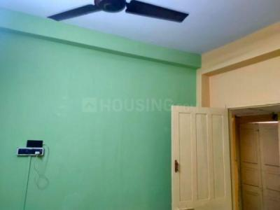 Gallery Cover Image of 800 Sq.ft 2 BHK Independent House for rent in New Alipore for 10500