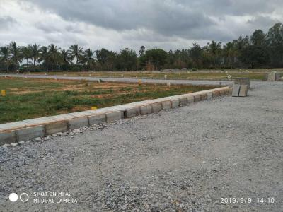 Gallery Cover Image of  Sq.ft Residential Plot for buy in Anchemuskur for 1920000