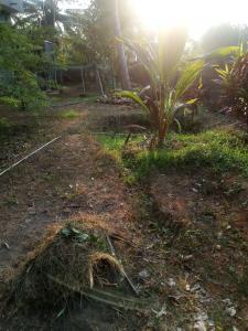 8712 Sq.ft Residential Plot for Sale in Santhekatte, Udupi