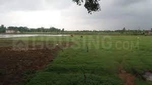 175 Sq.ft Residential Plot for Sale in Maheshwaram, Hyderabad