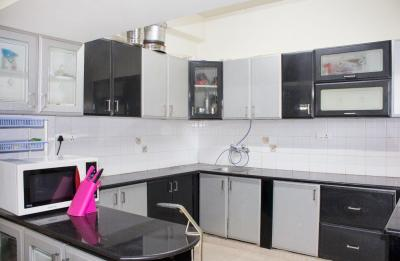 Kitchen Image of PG 4643673 Whitefield in Whitefield