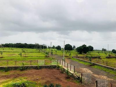 Gallery Cover Image of  Sq.ft Residential Plot for buy in Pohi for 750000