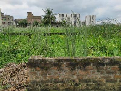 1740 Sq.ft Residential Plot for Sale in Rajarhat, Kolkata