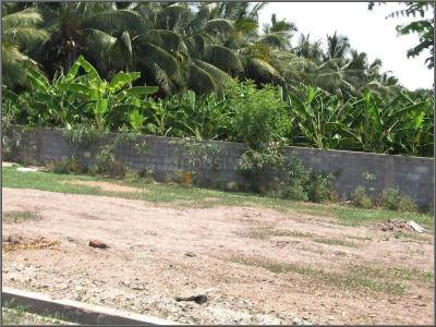 Gallery Cover Image of  Sq.ft Residential Plot for buy in Kovilpalayam for 1755500
