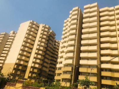 Gallery Cover Image of 1000 Sq.ft 2 BHK Apartment for buy in Pyramid Elite, Sector 86 for 2575000