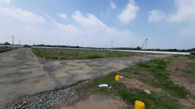 Gallery Cover Image of  Sq.ft Residential Plot for buy in Arivozi Nagar for 1035000