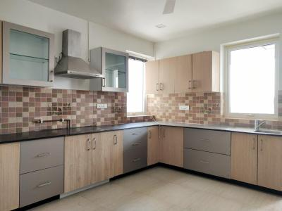 Gallery Cover Image of 3350 Sq.ft 3 BHK Apartment for rent in Brigade No 7, Banjara Hills for 175000