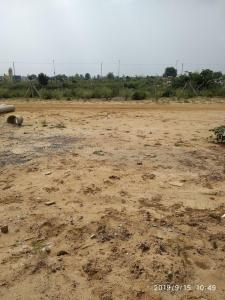 267 Sq.ft Residential Plot for Sale in Sector 62, Gurgaon