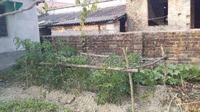 Gallery Cover Image of  Sq.ft Residential Plot for buy in Khodar Bazar Uttarpara for 1800000