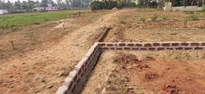 1500 Sq.ft Residential Plot for Sale in Hanspal, Bhubaneswar