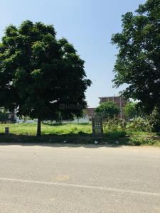 Gallery Cover Image of 350 Sq.ft Residential Plot for buy in Sector 84 for 9000000