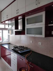 Gallery Cover Image of 1270 Sq.ft 2 BHK Apartment for rent in Whitefield for 35000