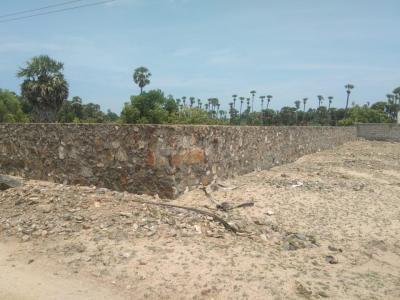 28800 Sq.ft Residential Plot for Sale in Injambakkam, Chennai