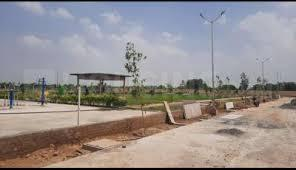 1230 Sq.ft Residential Plot for Sale in sector 98, Faridabad
