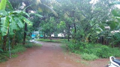 Gallery Cover Image of  Sq.ft Residential Plot for buy in Chettupuzha for 60000000