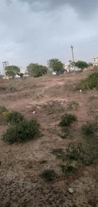 2250 Sq.ft Residential Plot for Sale in Sector 64, Faridabad