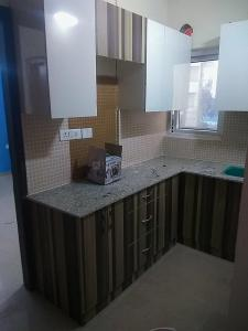 Gallery Cover Image of 550 Sq.ft 1 BHK Apartment for rent in Sector 77 for 13000