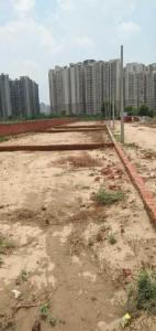 Gallery Cover Image of 448 Sq.ft Residential Plot for buy in Noida Extension for 1400000