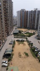 Gallery Cover Image of 1588 Sq.ft 3 BHK Apartment for rent in Shastri Nagar for 11500