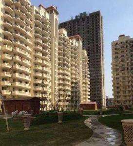 Gallery Cover Image of 1045 Sq.ft 2 BHK Apartment for rent in Sector 70 for 6000