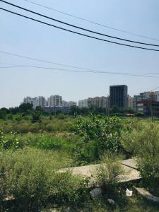 302 Sq.ft Residential Plot for Sale in Sector 77, Faridabad