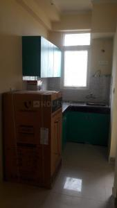 Gallery Cover Image of 580 Sq.ft 1 BHK Apartment for rent in Noida Extension for 9999