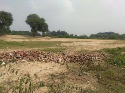 Gallery Cover Image of  Sq.ft Residential Plot for buy in Phaphamau for 700000