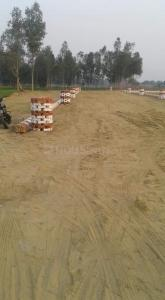 Gallery Cover Image of  Sq.ft Residential Plot for buy in Gomti Nagar for 499000