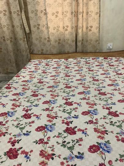 Bedroom Image of PG 4272198 Ballygunge in Ballygunge