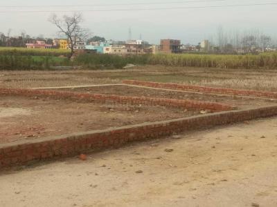 3150 Sq.ft Residential Plot for Sale in Chandrabani, Dehradun