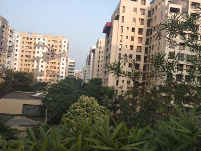 Gallery Cover Image of 900 Sq.ft 2 BHK Apartment for rent in New Town for 13000