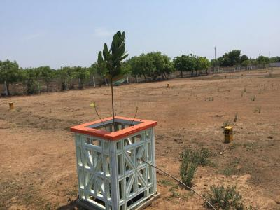 Gallery Cover Image of  Sq.ft Residential Plot for buy in Thiruporur for 1500000