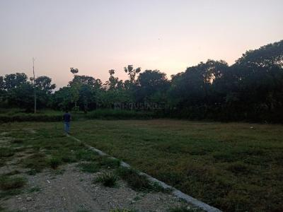 1142 Sq.ft Residential Plot for Sale in Baronwala, Dehradun