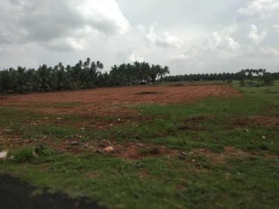 Gallery Cover Image of  Sq.ft Residential Plot for buy in Nehru Nagar West for 97500000