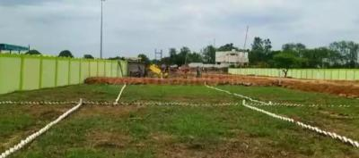 Gallery Cover Image of 1000 Sq.ft Residential Plot for buy in Bilhari for 850000