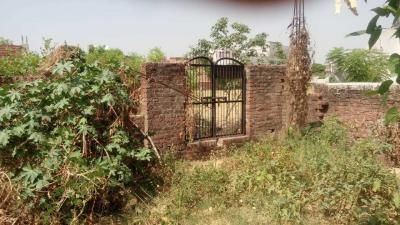 Gallery Cover Image of  Sq.ft Residential Plot for buy in Jhusi for 9000000