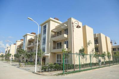 Gallery Cover Image of 1103 Sq.ft 3 BHK Independent Floor for rent in BPTP Parklands Pride, Sector 77 for 14000